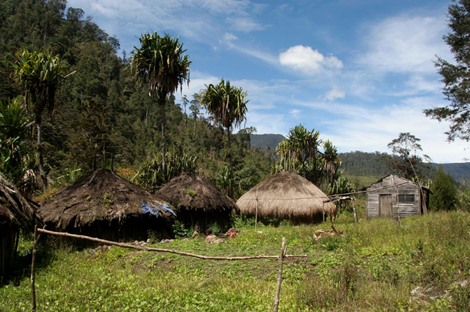 papua village Hiking the Baliem Valley on a budget