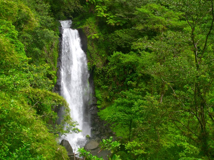 backpacking in dominica travel guide trafalgar falls backpacking the Caribbean