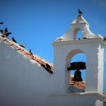 The Top Things To Do In Tenerife