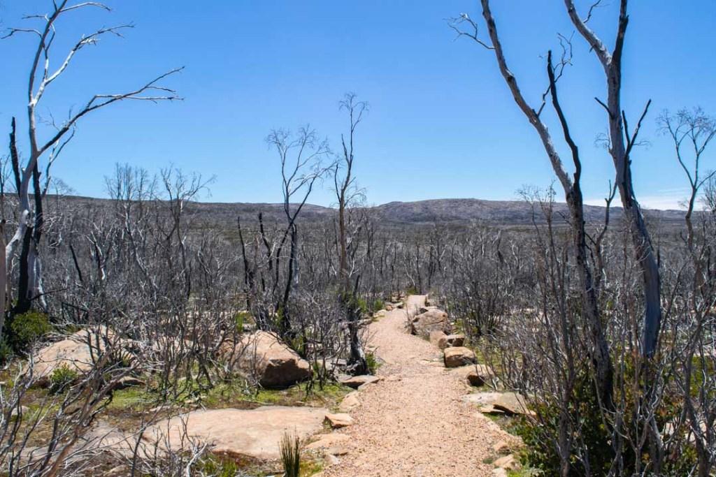 Devil's Gullet Walking Track