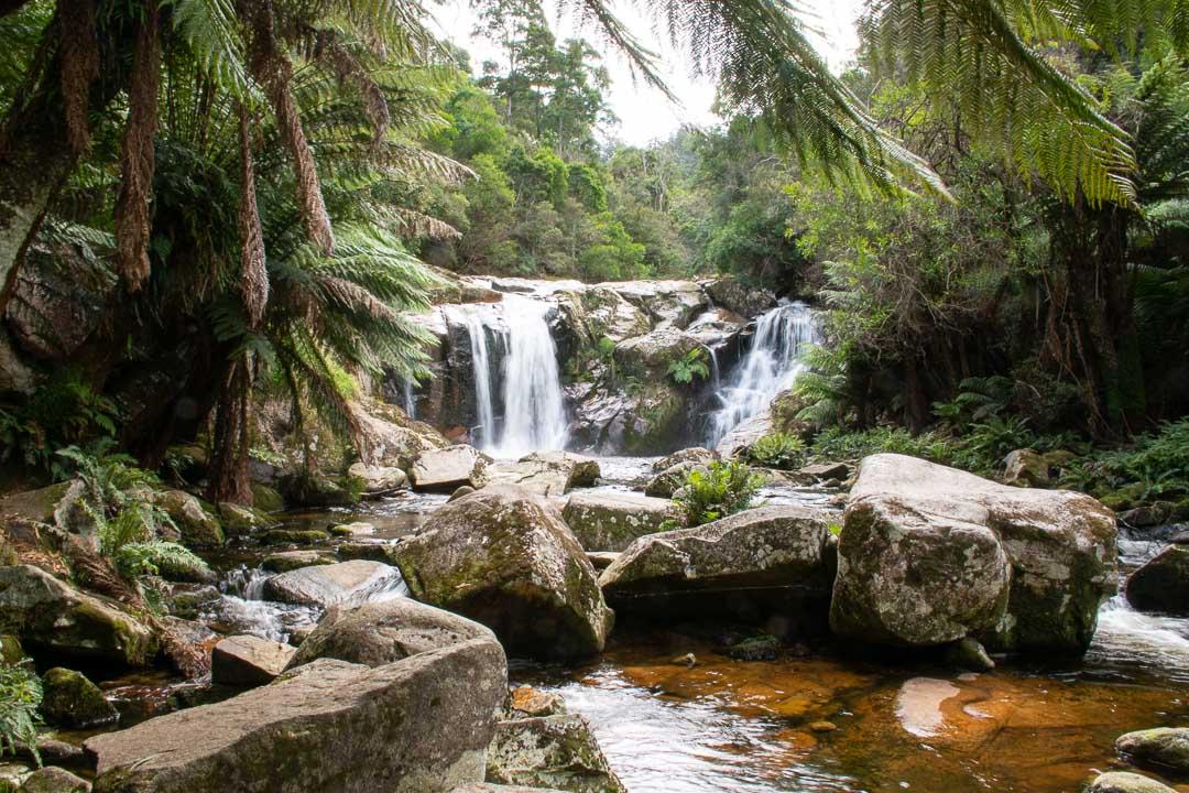 Best Waterfalls in North Tasmania to Seek Out - Travelsewhere