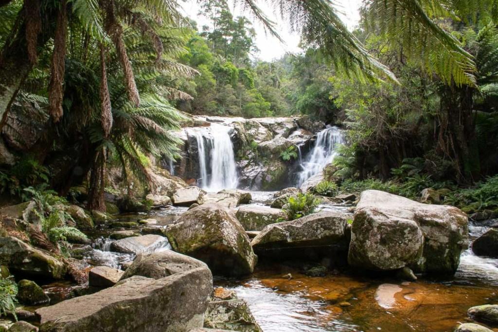 Halls Falls, Best Waterfalls in Tasmania