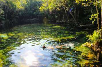 Schnorcheln in dem Cenote Chikin Ha