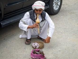 Tanzende Kobra Indien