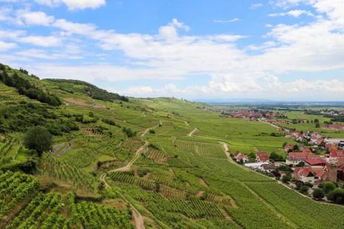 Aussicht Burg Kaysersberg