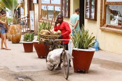 Kokusnuss Verkäufer Sansibar