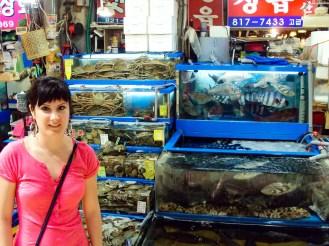 Fischmarkt Seoul Südkorea
