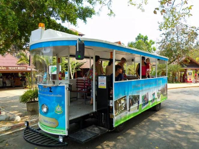 Shuttle zum Thai Elephant Conservation Center