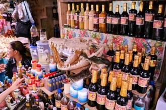Pflanzenextrakten, Krokodilschädel auf Belen Market