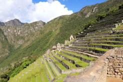 Terrassen von Machu Picchu