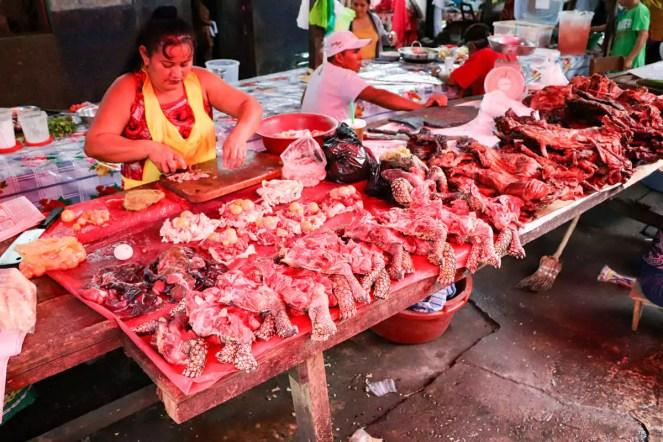 Schildkröten Beine Belen Market Iquitos