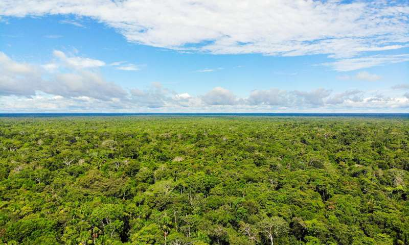 Amazonas Peru