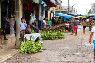 Bananen auf der Straße in Nauta