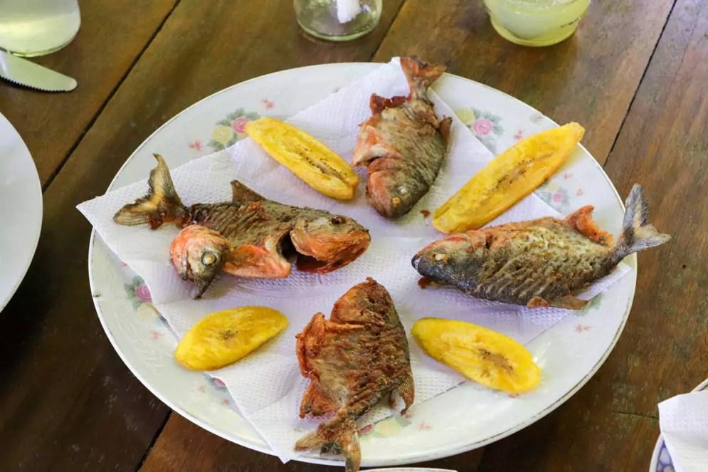 Frittierte Piranhas