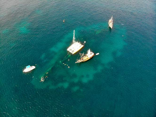 SS Antilla Shipwreck