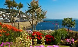 Penzance, without the pirates