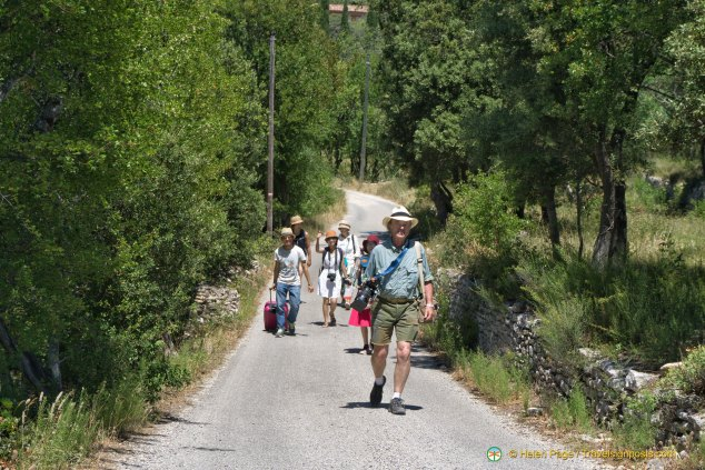 A Walk in the Luberon countryside