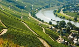 Mosel – Germany's Most Prestigious Wine Region