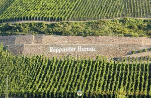 Germany wine regions