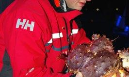 King Crab Fishing, Norway