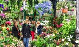 Marché aux Fleurs et aux Oiseaux Cité