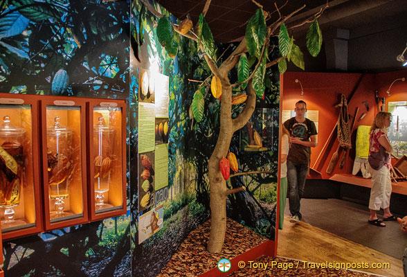 Paris Chocolate Museum