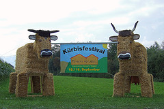 Festivals and Events in Switzerland