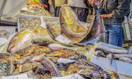 A Visit to the Rialto Fish Market to See What's Cooking in Venice