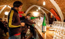 Wine-tasting in Weissenkirchen, a Top Wachau Wine Town