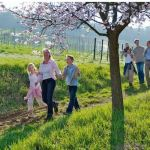 Wine Walking Weekend in Germany – April 2016