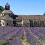Abbaye de Sénanque and its Stunning Lavender Fields