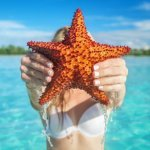 Saona Island Featured Image Starfish TravelSmart VIP
