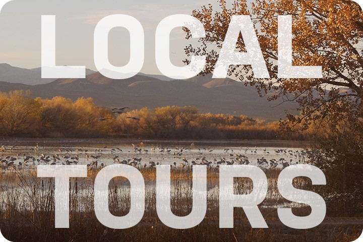 Link to information about local tours in South Central New Mexico