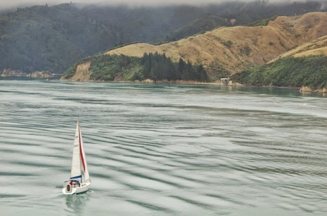 Marlborough Sound, New Zealand
