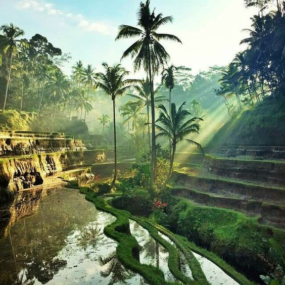 The romantic destination of Bali