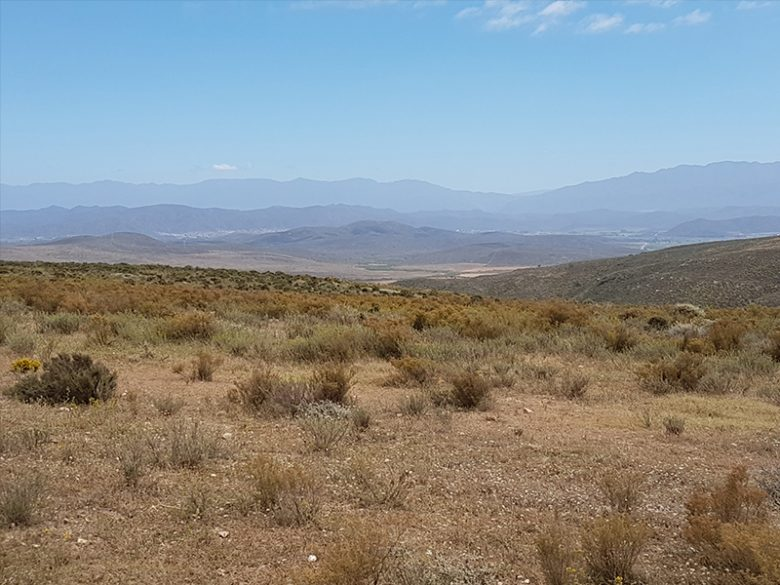 langeberg-mountains_edit