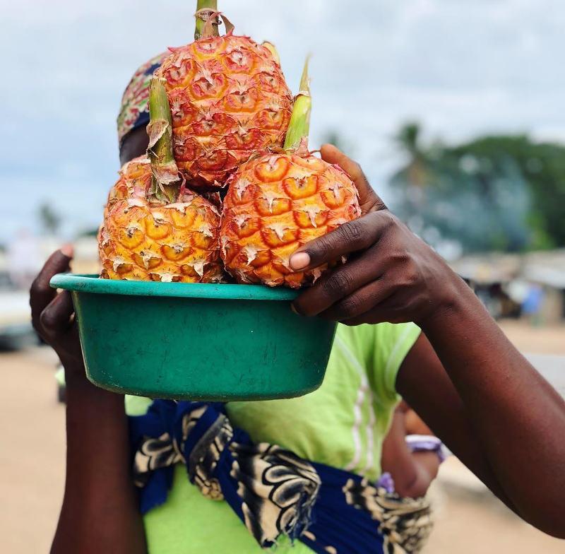 fruit mozambique