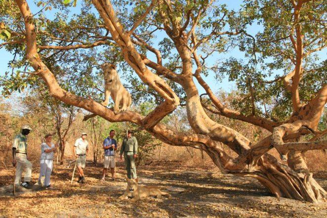 Fathala Wildlife Reserve