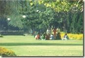 leisure valley in chandigarh