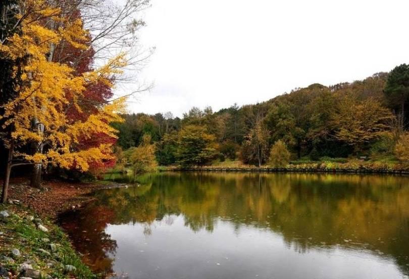 Atatürk Arboretum Istanbul