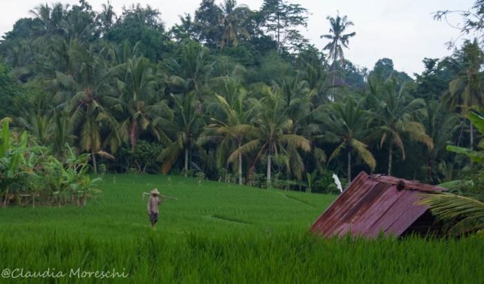 bali-travelstories