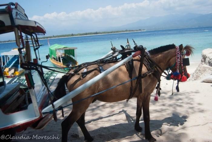 Il cidomo, il carretto trainato da cavalli tipico delle Gili