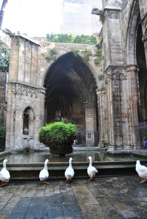 cattedrale-gotica-barcellona