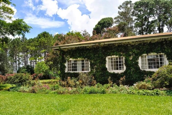 La nostra casa nella piantagione di tè