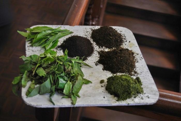 Il tè verde, il tè non fermentato