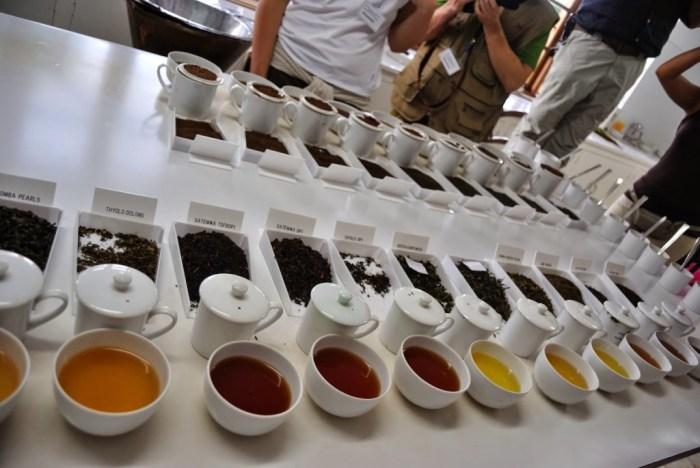 Tea tasting al via! Si degusta