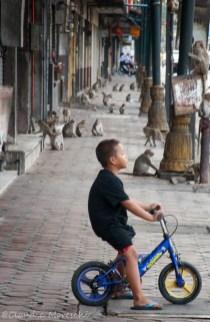 lopburi-streetlife