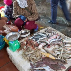 mesce al mercato di Cat Ba Island