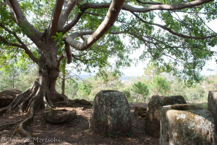 plain-of-jars-sito2