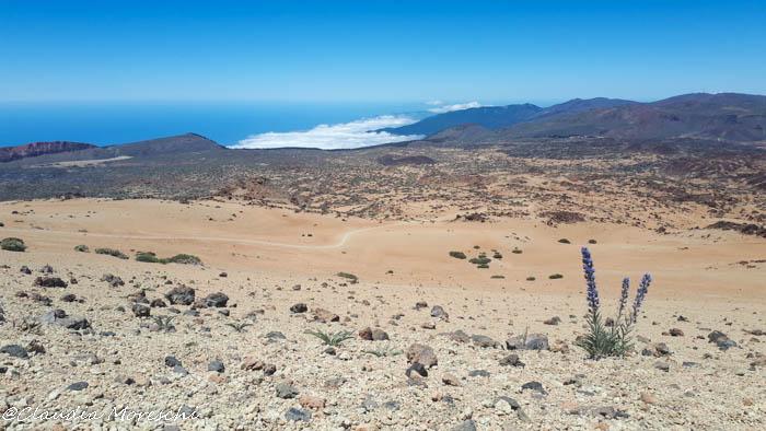La prima parte del sentiero verso il Teide
